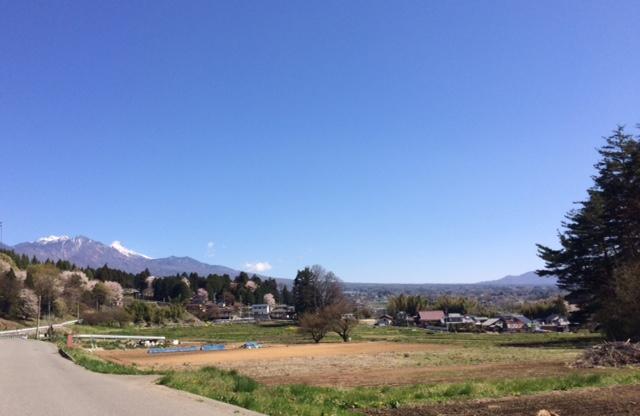 八ヶ岳南麓の山桜と新緑